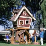 The Most Amazing Back Yard Play Sets You've Ever Seen!