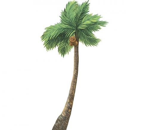 Palm Tree Accent Mural Thumbnail