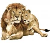 Jungle Animals - Lion Family Accent Mural
