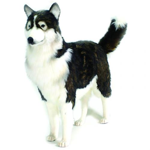 Zeus the Husky by Hansa (Life Size)