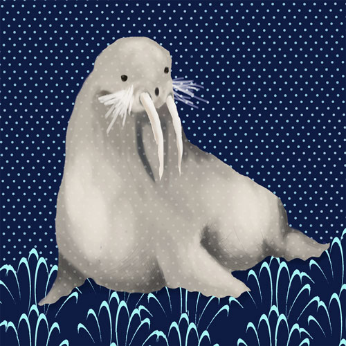 Francis the Walrus by Oopsy daisy