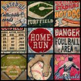 Americas Favorite Pastime by Oopsy daisy