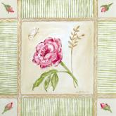 Cottage Rose, Left Leaning by Oopsy daisy