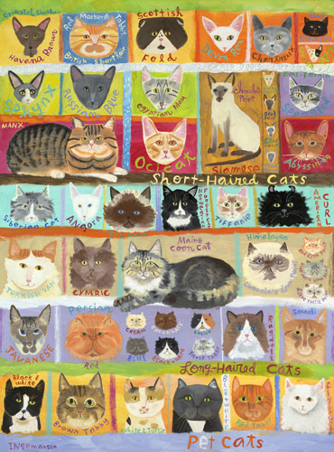 Best in Show Cats! by Oopsy daisy