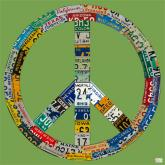 Peace License Plate in Green by Oopsy daisy