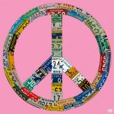 Peace License Plate in Pink by Oopsy daisy