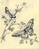 Toile Butterflies in Cream & Black by Oopsy daisy
