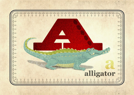 A is for Alligator by Oopsy daisy