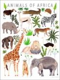 Animals of Africa by Oopsy daisy