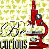 Be Curious by Oopsy daisy