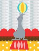 Circus Tricks - Seal by Oopsy daisy