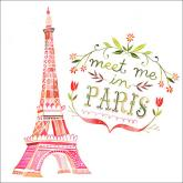 Meet Me In Paris by Oopsy daisy