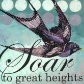 Soar to Great Heights by Oopsy daisy