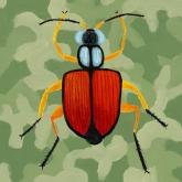 Green Camo Beetle by Oopsy daisy