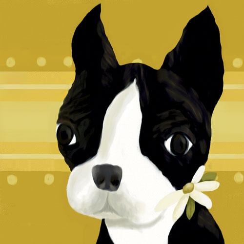 Bea the Boston Terrier by Oopsy daisy