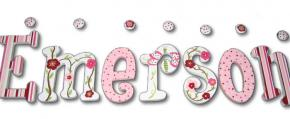 Cherry Blossoms & Dragonflies Kids' Wall Letters