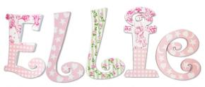 Ellie's Pink and Green Handpainted Letters with Toile