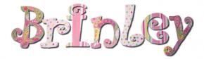 Paisley Sorbet Custom Painted Wall Letters