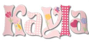 Kayla's Pink Gingham Hand Painted Wall Letters